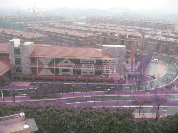 世纪城国际公馆